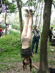 Public hanging outdoor